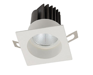 COB Fixed LED Downlight